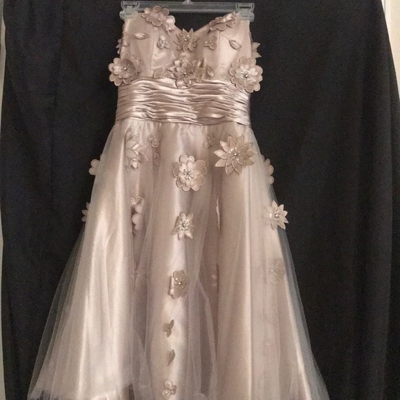 Champagne Knee Length Dress